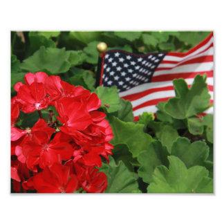 Foto Os EUA embandeiram e flores