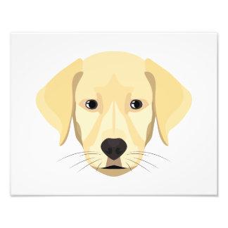 Foto Ouro Retriver do filhote de cachorro da ilustração
