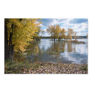 Foto Outono no lago dog preto