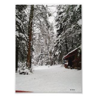 Foto País das maravilhas do inverno