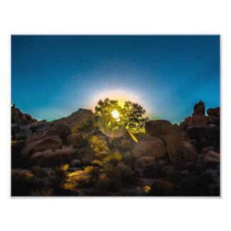 Foto Parque de Joshua TreeNational do nascer do sol