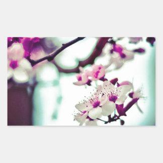 Foto Pastel da flor de cerejeira Adesivo Retangular