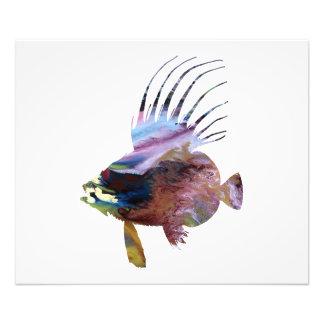 Foto Peixes do Dory - arte colorida dos peixes