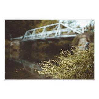 Foto Pesca sob a ponte