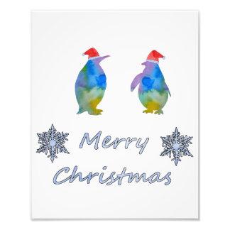 Foto Pinguins do Natal