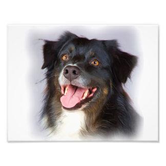 Foto Pintura do cão - arte do cão - pet a arte