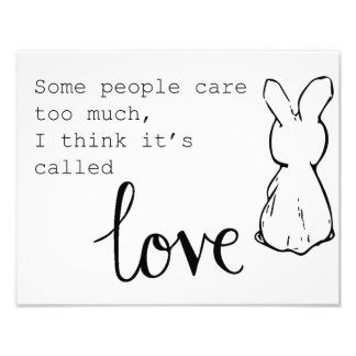 Foto Poster doce do coelho