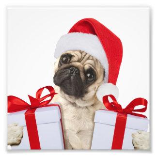 Foto Presentes do Pug - cão claus - pugs engraçados -