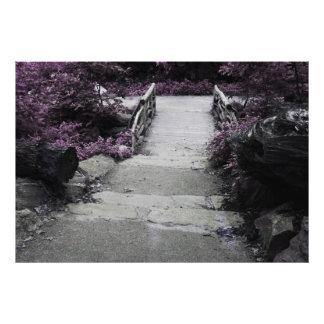 Foto preta & branca da ponte da paisagem