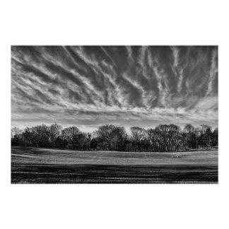 Foto preta & branca do Central Park da paisagem