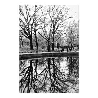 Foto preto e branco da paisagem do Central Park