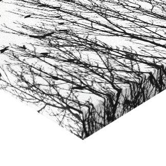 Foto preto e branco minimalista dos pássaros nas