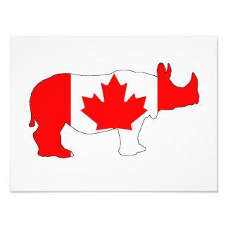 Foto Rinoceronte Canadá