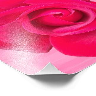 Foto Rosa vermelho romântico do rosa