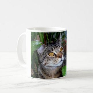 Caneca De Café Foto sua caneca de café do gato do animal de