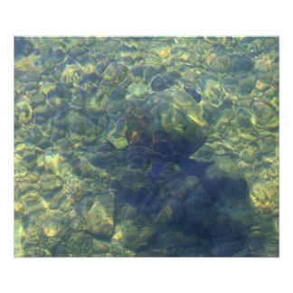 Foto Tartaruga que esconde no abstrato Havaí-Havaiano