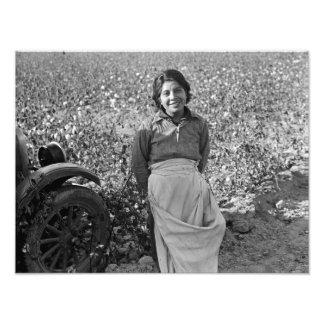 Foto Trabalhador emigrante no campo do algodão por