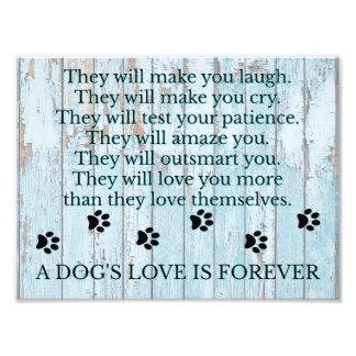 Foto Um amor dos cães é Forever