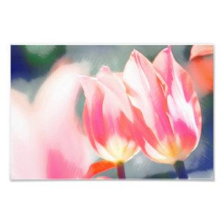 Foto Um esboço do duo do Tulipa