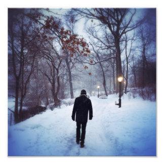 Foto Um trajeto frio no Central Park