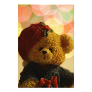 Foto Urso #1 do feriado