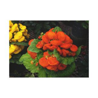 Foto vermelha e amarela da flor em canvas