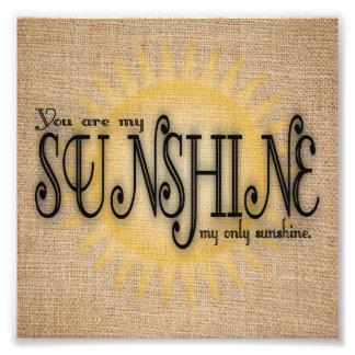 Foto Você é minha luz do sol na serapilheira