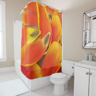 Fotografia alaranjada vibrante das pétalas da cortina para chuveiro