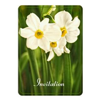 Fotografia branca da natureza do narciso do convite 12.7 x 17.78cm