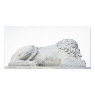 Fotografia branca selvagem da escultura da estátua cartão com foto
