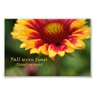 Fotografia colorida da flor das citações