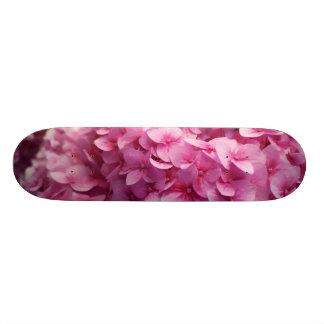 Fotografia cor-de-rosa da flor do close up da flor shape de skate 19,7cm