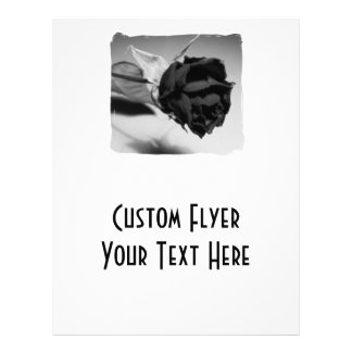Fotografia cor-de-rosa secada - preto & branco flyer 21.59 x 27.94cm