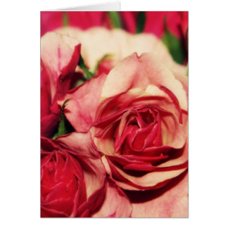 Fotografia das belas artes do buquê do rosa do cartão comemorativo