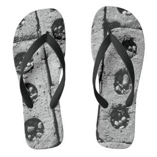 Fotografia dos Pavers do tijolo em chinelos