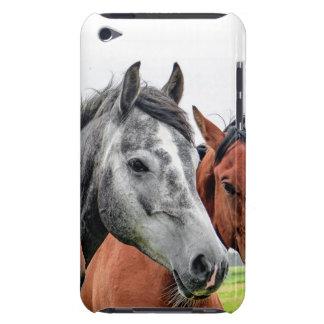 Fotografia maravilhosa do garanhão dos cavalos capa para iPod touch