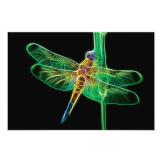 Fractal da libélula impressão de foto