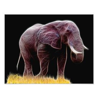 Fractal do elefante impressão de foto