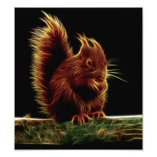 Fractal sinistro do esquilo impressão de foto