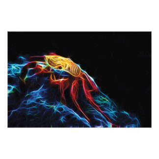 Fractal vermelho do caranguejo de rocha impressão de foto