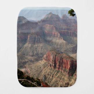 Fralda De Boca Borda norte do Grand Canyon, arizona, EUA 6