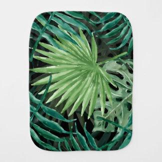 Fralda De Boca Grande palma de samambaia verde e plantas