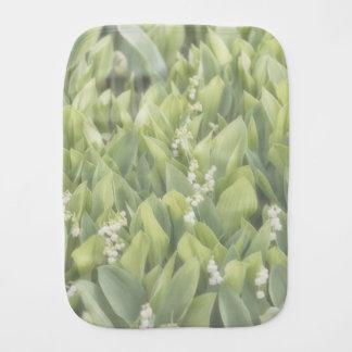 Fralda De Boca Lírio do remendo da flor do vale na névoa
