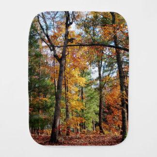 Fralda De Boca Outono na floresta
