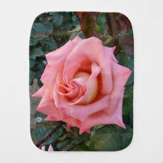 Fralda De Boca rosa do rosa