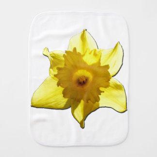 Fraldinha De Boca Daffodil 1.5.5.b da trombeta amarela