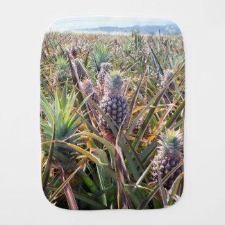 Fraldinha De Boca Pano do Burp do campo do abacaxi