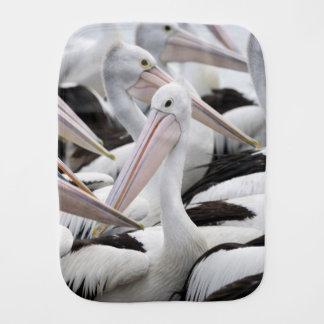 Fraldinha De Boca Vagem dos pelicanos
