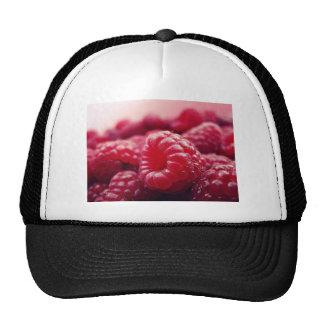 framboesas saudáveis frescas da fruta vermelha das boné