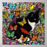 Freckles nas borboletas - gatinho do smoking posteres